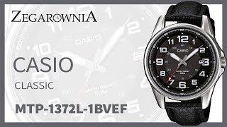 Zegarek Casio Classic MTP-1372L-1BVEF | Zegarownia.pl