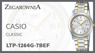 Zegarek Casio Classic LTP-1264G-7BEF | Zegarownia.pl